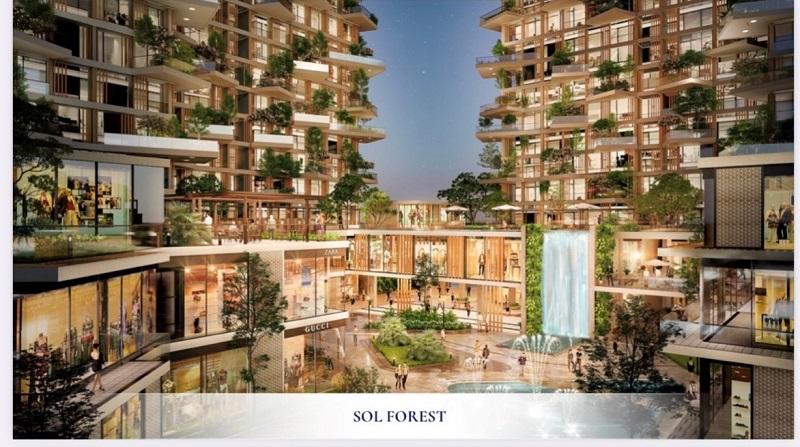 phối cảnh dự án Solforest