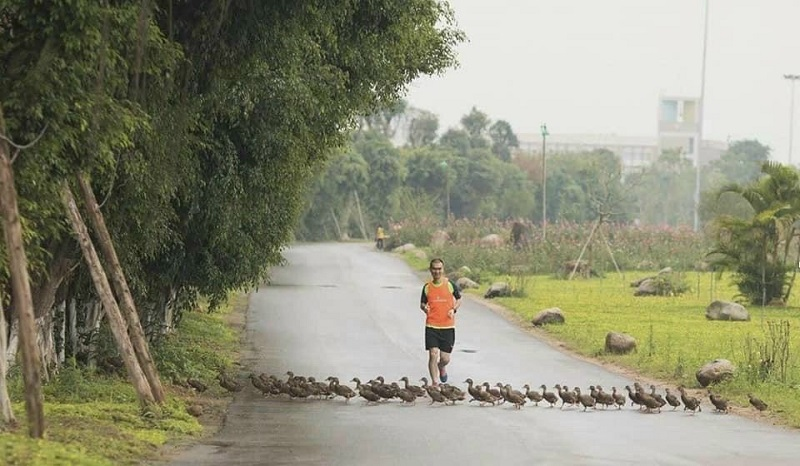Cung đường chạy bộ tại Khu đô thị ecopark